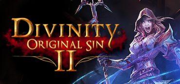 Divinity Original Sin 2 [STEAM активация]